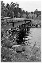Johns Bridge. Allagash Wilderness Waterway, Maine, USA ( black and white)