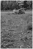 Clearfelt area with forestry truck and trailer. Maine, USA (black and white)