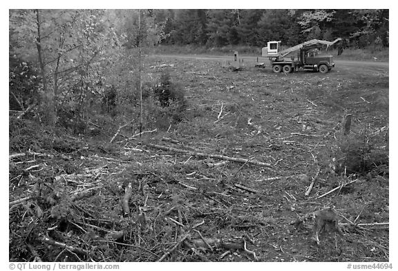 Deforested area and forestry truck and trailer. Maine, USA (black and white)