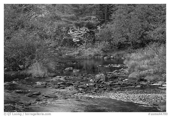 Stream and fall reflections. Maine, USA (black and white)