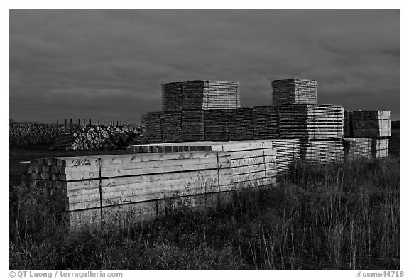 Stacks of finished lumber at dusk,  Ashland. Maine, USA (black and white)
