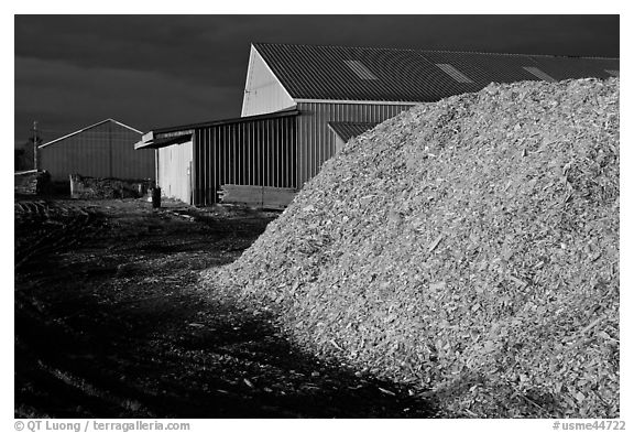 Sawdust in lumber mill at night, Ashland. Maine, USA (black and white)