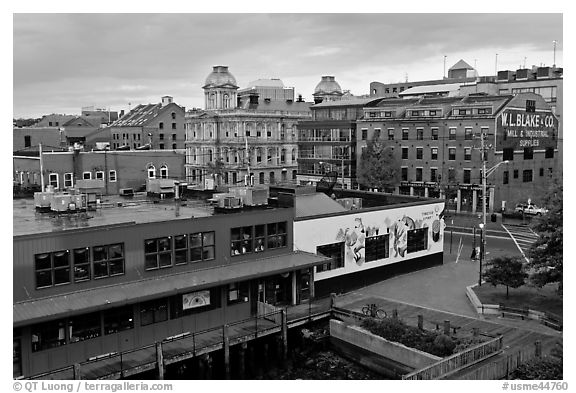 Harbor historic buildings at sunrise. Portland, Maine, USA (black and white)