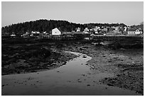 Tidal flats and houses, sunrise. Stonington, Maine, USA ( black and white)