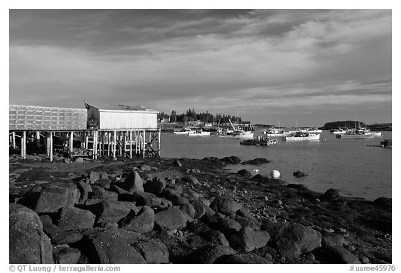 Harber at low tide, late afternoon. Corea, Maine, USA (black and white)