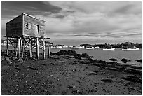 Tidal flats and harbor. Corea, Maine, USA (black and white)