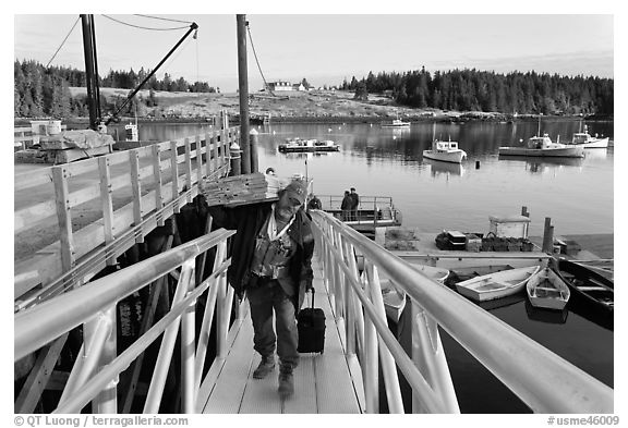 Man carrying construction wood and rolling case out of mailboat. Isle Au Haut, Maine, USA (black and white)