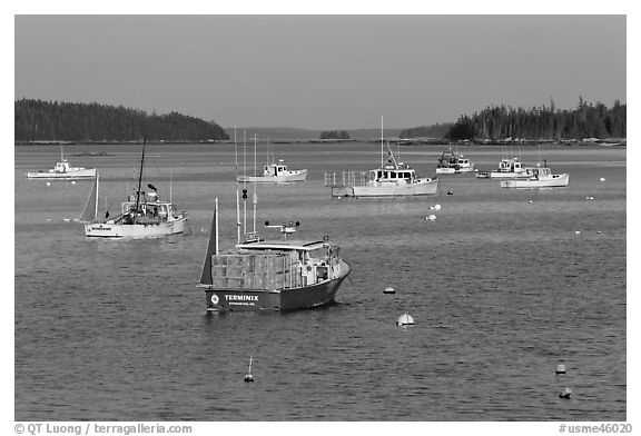Traditional Maine  lobster boat. Stonington, Maine, USA (black and white)