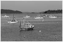 Traditional Maine  lobster boat. Stonington, Maine, USA ( black and white)