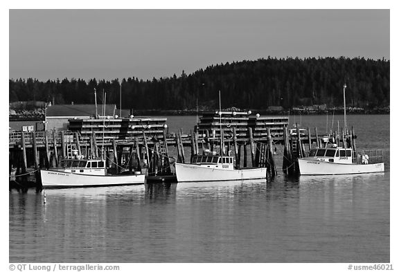 Lobster boats and wharf. Stonington, Maine, USA (black and white)