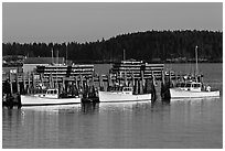 Lobster boats and wharf. Stonington, Maine, USA ( black and white)