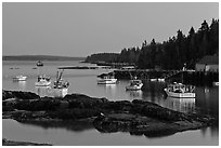Lobstering fleet at dusk. Stonington, Maine, USA ( black and white)