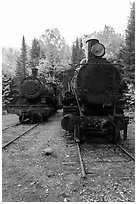 Two locomotives in the woods. Allagash Wilderness Waterway, Maine, USA (black and white)