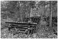 Rusting railway equipment in the woods. Allagash Wilderness Waterway, Maine, USA ( black and white)