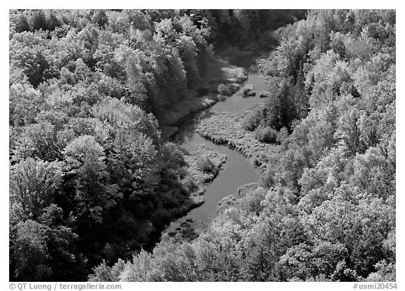 River with curve and fall forest from above, Porcupine Mountains State Park. Upper Michigan Peninsula, USA (black and white)