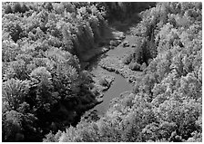 River with curve and fall forest from above, Porcupine Mountains State Park. Upper Michigan Peninsula, USA ( black and white)