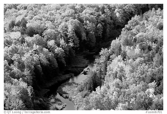 River and trees in autumn colors, Porcupine Mountains State Park. Upper Michigan Peninsula, USA (black and white)