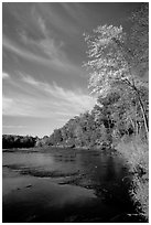 Trees and river, Banning State Park. Minnesota, USA (black and white)