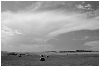 Hay rolls and storm cloud. North Dakota, USA (black and white)