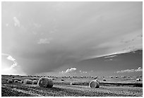 Storm cloud and hay rolls. North Dakota, USA ( black and white)