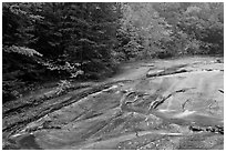Stream over rock slab in autumn, Franconia Notch State Park. New Hampshire, USA (black and white)
