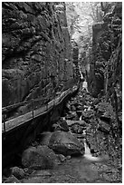 Flume Gorge, Franconia Notch State Park. New Hampshire, USA (black and white)