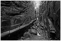 The Flume, narrow granite gorge, Franconia Notch State Park. New Hampshire, USA (black and white)