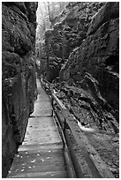 Boardwalk in the Flume, Franconia Notch State Park. New Hampshire, USA ( black and white)