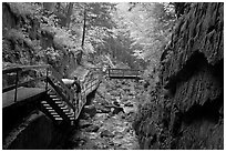 Rainy day at the Flume, Franconia Notch State Park. New Hampshire, USA ( black and white)