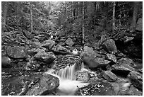 Creek in autumn, Franconia Notch State Park. New Hampshire, USA ( black and white)