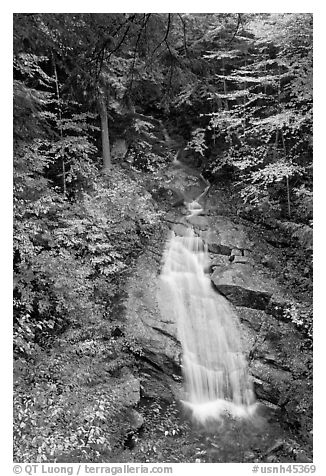 Avalanche Falls, Franconia Notch State Park. New Hampshire, USA (black and white)