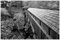 Sentinel Pine covered bridge, Franconia Notch State Park. New Hampshire, USA (black and white)