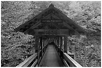 Covered footbridge in autumn, Franconia Notch State Park. New Hampshire, USA (black and white)