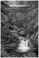 Covered bridge high above creek, Franconia Notch State Park. New Hampshire, USA (black and white)