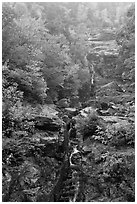 Waterfall, Crawford Notch State Park, White Mountain National Forest. New Hampshire, USA ( black and white)