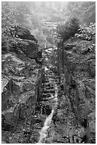 Silver Cascade in Autumn, Crawford Notch State Park. New Hampshire, USA (black and white)