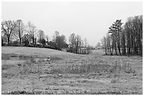 Rural scenery. Walpole, New Hampshire, USA (black and white)