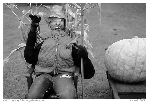 Scarecrow. New Hampshire, USA (black and white)