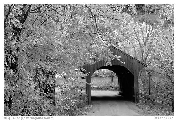 Covered bridge, Bath. New Hampshire, New England, USA (black and white)