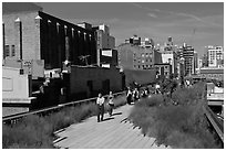 People strolling the High Line. NYC, New York, USA (black and white)