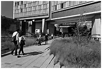 Walking the High Line. NYC, New York, USA (black and white)