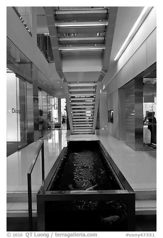 Staircase and pool, Bloomberg building. NYC, New York, USA (black and white)