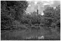 Pond and skyscrappers, Central Park. NYC, New York, USA ( black and white)