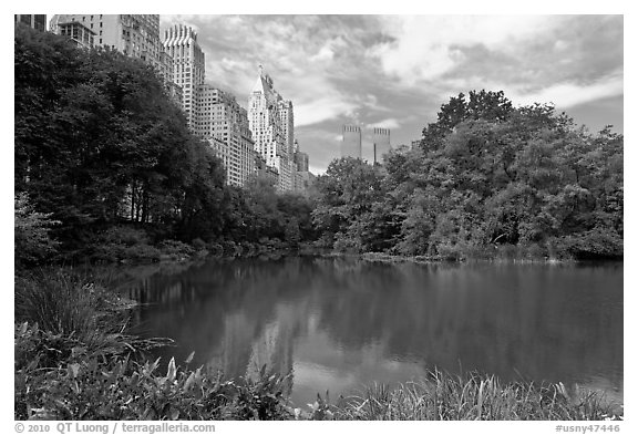 Pond and high-rise buildings, Central Park. NYC, New York, USA (black and white)