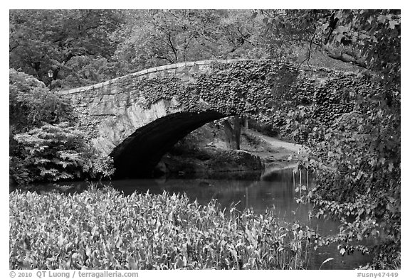 Stone bridge, Central Park. NYC, New York, USA (black and white)