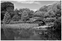 Pond and stone bridge, Central Park. NYC, New York, USA (black and white)
