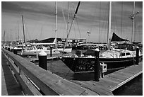 Large yachts in Newport harbor. Newport, Rhode Island, USA ( black and white)