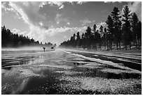Highway with hail, Black Hills National Forest. Black Hills, South Dakota, USA (black and white)