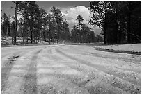 Highway covered with hailstones, Black Hills National Forest. Black Hills, South Dakota, USA (black and white)