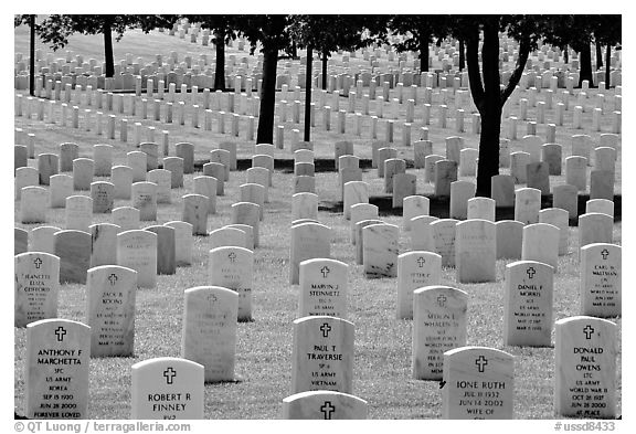 Rows of gravestones, Black Hills National Cemetery. Black Hills, South Dakota, USA (black and white)